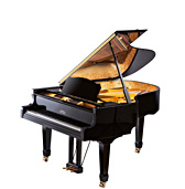 Visit the ESTONIA Piano Company Website -- Click Here