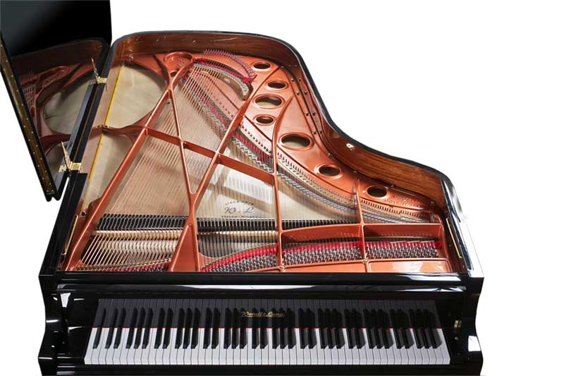 Click Here to Visit the Wendl and Lung Piano Website!